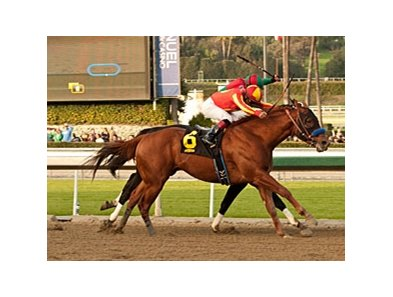 Coil overtakes Ultimate Eagle to win the San Pasqual Stakes by a head.