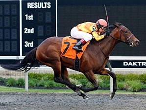 Leinan wins the Inagural Stakes.