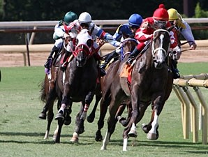 Aces N Kings wins the 2010 Sunny's Halo Stakes.