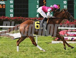 Workin For Hops wins the 2010 Grindstone Stakes.