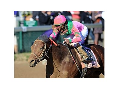 "2011 Breeders' Cup Dirt Mile winner Caleb's Posse faces 5 in the Tom Fool.<br><a target=""blank"" href=""http://www.bloodhorse.com/horse-racing/photo-store?ref=http%3A%2F%2Fpictopia.com%2Fperl%2Fgal%3Fprovider_id%3D368%26ptp_photo_id%3D9729516%26ref%3Dstory"">Order This Photo</a>"