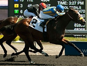 I'm a Kittyhawk wins the 2013 Lady Angela Stakes.