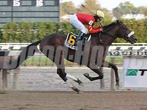 Break Water Edison winning the Nashua Stakes at Aqueduct