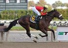 Break Water Edison won the one-mile Nashua at Aqueduct.