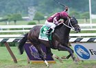 "Tizway flies home in the Whitney at Saratoga.<br><a target=""blank"" href=""http://www.bloodhorse.com/horse-racing/photo-store?ref=http%3A%2F%2Fpictopia.com%2Fperl%2Fgal%3Fprovider_id%3D368%26ptp_photo_id%3D9627355%26ref%3Dstory"">Order This Photo</a>"