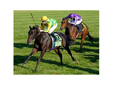 "Never Retreat storms home to win the First Lady at Keeneland.<br><a target=""blank"" href=""http://www.bloodhorse.com/horse-racing/photo-store?ref=http%3A%2F%2Fpictopia.com%2Fperl%2Fgal%3Fprovider_id%3D368%26ptp_photo_id%3D9701181%26ref%3Dstory"">Order This Photo</a>"