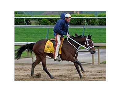 Proud Spell will be the likely Kentucky Oaks (gr. I) post time favorite if stablemate Eight Belles scratches in favor of the Derby.