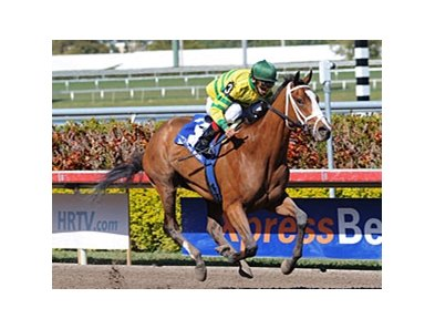 "Devil May Care draws off to victory in the Bonnie Miss.<br><a target=""blank"" href=""http://www.bloodhorse.com/horse-racing/photo-store?ref=http%3A%2F%2Fpictopia.com%2Fperl%2Fgal%3Fprovider_id%3D368%26ptp_photo_id%3D8849913%26ref%3Dstory"">Order This Photo</a>"