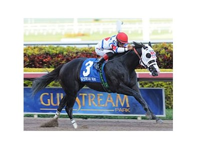 Sunshine State Stakes winner Bahamian Squall takes on open company in the Gulfstream Sprint Championship Stakes.