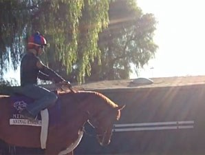 Animal Kingdom at Santa Anita.