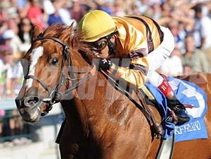 Wise Dan wins the 2010 Phoenix.