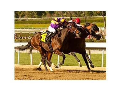 Anthony's Cross (inside) outfights Riveting Reason to take the Robert B. Lewis Stakes.