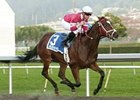 Cal Derby Has 'Positive' Look