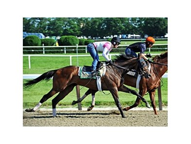 "Five Sixteen at Belmont Park.<br><a target=""blank"" href=""http://photos.bloodhorse.com/AtTheRaces-1/at-the-races-2012/22274956_jFd5jM#!i=1880003085&k=SGWNKNJ"">Order This Photo</a>"
