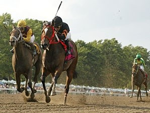 Twelve Pack Shelly wins the 2010 Colleen Stakes.