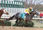Conveyance will make his 2011 debut in the Mahab Al Shimaal at Meydan Racecourse March 3.