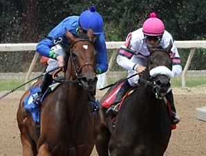 Delaunay wins the 2012 Temperance Hill.