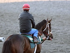 Rydilluc - Keeneland Work, April 6, 2013.