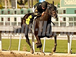 Ismene in the California Breeders' Champion Stakes.