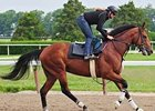 "Big Brown, training at Belmont Park May 31.<br><a target=""blank"" href=""http://www.bloodhorse.com/horse-racing/photo-store?ref=http%3A%2F%2Fpictopia.com%2Fperl%2Fgal%3Fprovider_id%3D368%26ptp_photo_id%3D4701450%0D%0A%26ref%3Dstory"">Order This Photo</a>"