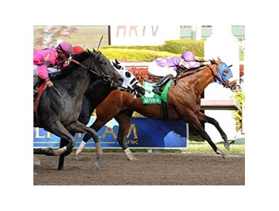"Fort Loudon holds off his rivals to win the Gulfstream Park Sprint Championship Stakes.<br><a target=""blank"" href=""http://photos.bloodhorse.com/AtTheRaces-1/at-the-races-2013/27257665_QgCqdh#!i=2357938592&k=S4mFdX6"">Order This Photo</a>"
