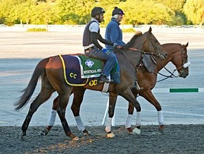 Mystical Star - Arlington, August 17, 2012.