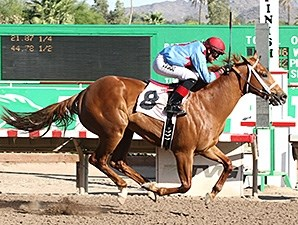 Brookerson wins the ATBA Spring Sales Stakes.