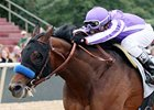 Southwest Stakes winner Castaway is among those under consideration for the Coolmore Lexington Stakes.