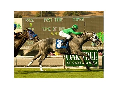 "California Flag in the Morvich Handicap at Oak Tree. <br><a target=""blank"" href=""http://www.bloodhorse.com/horse-racing/photo-store?ref=http%3A%2F%2Fpictopia.com%2Fperl%2Fgal%3Fprovider_id%3D368%26ptp_photo_id%3D8523823%26ref%3Dstory"">Order This Photo</a>"