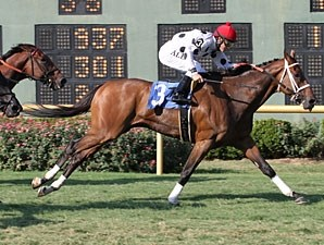 Go Tiger Jack wins the 2011 Barksdale Stakes.