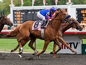 Mister Marti Gras wins the 2011 Washington Park.