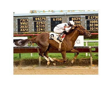 Undefeated My Time to Star will battle Rule and six others in the Delta Jackpot.