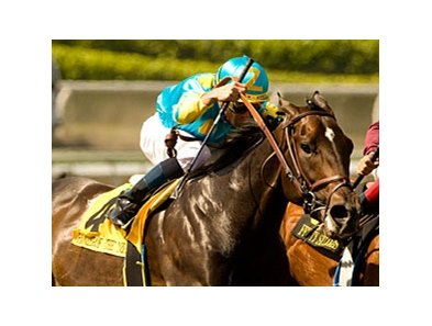 "Pioneerof the Nile's biggest win came in the Santa Anita Derby.<br><a target=""blank"" href=""http://www.bloodhorse.com/horse-racing/photo-store?ref=http%3A%2F%2Fpictopia.com%2Fperl%2Fgal%3Fprovider_id%3D368%26ptp_photo_id%3D7986529%26ref%3Dstory"">Order This Photo</a>"
