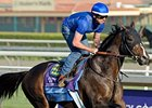 Title Contender takes on 6 in the Ohio Derby.