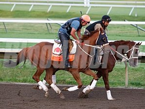 Ruler On Ice (left) and Nacho Friend at Monmouth, June 16, 2011.
