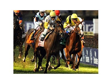 "Perfect Shirl (left) comes running late to upset the Breeders' Cup Filly & Mare Turf.<br><a target=""blank"" href=""http://www.bloodhorse.com/horse-racing/photo-store?ref=http%3A%2F%2Fpictopia.com%2Fperl%2Fgal%3Fprovider_id%3D368%26ptp_photo_id%3D9728638%26r"