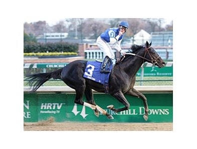 Einstein is just one of the big names expected for the Arlington Million.