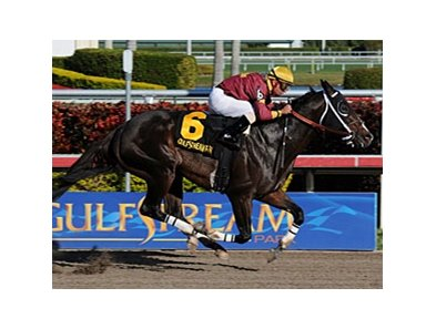 "2010 Breeders' Cup Sprint winner Big Drama headlines the Vosburgh.<br><a target=""blank"" href=""http://www.bloodhorse.com/horse-racing/photo-store?ref=http%3A%2F%2Fpictopia.com%2Fperl%2Fgal%3Fprovider_id%3D368%26ptp_photo_id%3D9372213%26ref%3Dstory"">Order This Photo</a>"