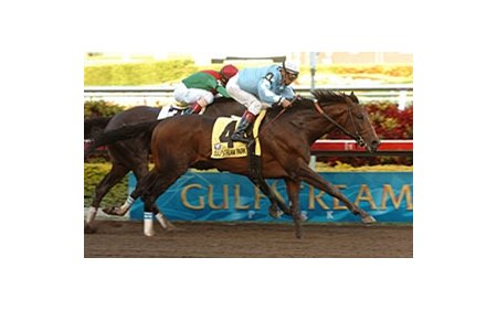 "Sir Whimsey won the 2008 Gulfstream Park Handicap this past winter. <br><a target=""blank"" href=""http://www.bloodhorse.com/horse-racing/photo-store?ref=http%3A%2F%2Fpictopia.com%2Fperl%2Fgal%3Fprovider_id%3D368%26ptp_photo_id%3D3722719%0D%0A%26ref%3Dstory"">Order This Photo</a>"