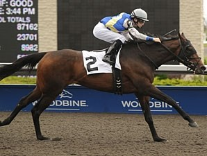 Upperline wins the 2011 Trillium Stakes.