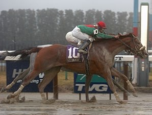 Visionaire comes from way back to nip Texas Wildcatter in a foggy Gotham.