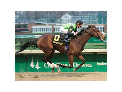 Serenading in the Falls City Handicap at Churchill Downs.