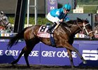 "She Be Wild comes home strong in the Breeders' Cup Juvenile Fillies.<br><a target=""blank"" href=""http://www.bloodhorse.com/horse-racing/photo-store?ref=http%3A%2F%2Fpictopia.com%2Fperl%2Fgal%3Fprovider_id%3D368%26ptp_photo_id%3D8609529%26ref%3Dstory"">Order This Photo</a>"
