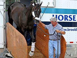 Take Charge Indy arrives at Churchill Downs on May 1, 2012.