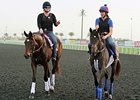 Royal Delta and Lucky Chappy Hit the Track