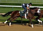 "Flying Private, who was 4th in the Preakness, is headed to the Belmont.<br><a target=""blank"" href=""http://www.bloodhorse.com/horse-racing/photo-store?ref=http%3A%2F%2Fpictopia.com%2Fperl%2Fgal%3Fprovider_id%3D368%26ptp_photo_id%3D8045145%26ref%3Dstory"">Order This Photo</a>"