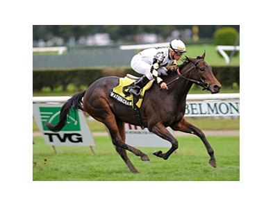 "Watsdachances tries for her first win of the year in the Lake George.<br><a target=""blank"" href=""http://photos.bloodhorse.com/AtTheRaces-1/at-the-races-2012/22274956_jFd5jM#!i=2137736940&k=K2MtKb2"">Order This Photo</a>"