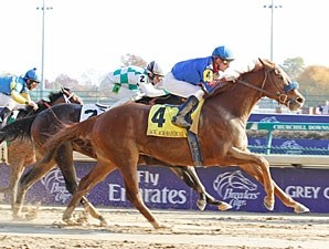 Mister Marti Gras wins the 2011 Ack Ack.
