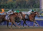 "Mucho Macho Man (inside rail) edges out Will Take Charge to win the 2013 Breeders' Cup Classic. <br><a target=""blank"" href=""http://photos.bloodhorse.com/BreedersCup/2013-Breeders-Cup/Classic/33150031_7ZnLk4#!i=2879125613&k=tgF9Nnh"">Order This Photo</a>"