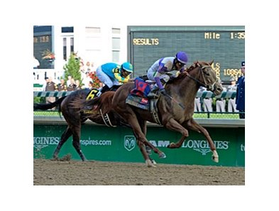 "I'll Have Another<br><a target=""blank"" href=""http://photos.bloodhorse.com/TripleCrown/2012-Triple-Crown/Kentucky-Derby-138/22650475_kRGdZF#!i=1831523251&k=CrgHdGF"">Order This Photo</a>"